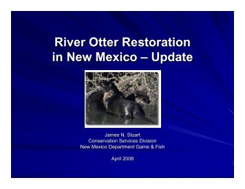 River Otter Restoration in New Mexico – Update