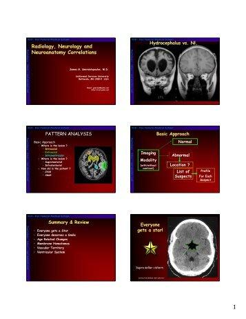 WEB - Radiology