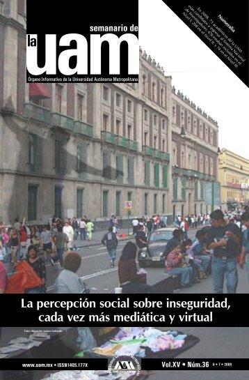La percepción social sobre inseguridad, cada vez más mediática y ...