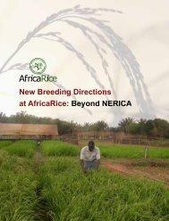 Beyond NERICA - Africa Rice Center