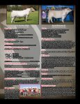 Mature Cow Herd Dispersal - Page 3