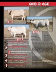 Mature Cow Herd Dispersal - Page 4
