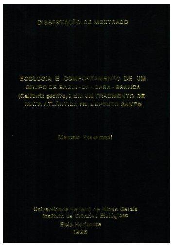 Page 1 Page 2 UNWERSIDADE FEDERAL DE MINAS GERAIS ...