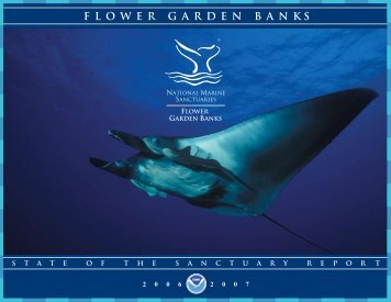 State of the Sanctuary Report 2006 - Flower Garden Banks National ...