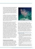 The impact of deep-sea fisheries and implementation of the UNGA ... - Page 7