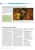Restaurering av flodpärlmusselvatten - Världsnaturfonden WWF - Page 6