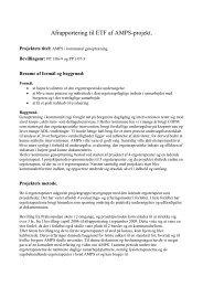 [pdf] Afrapportering til ETF at AMPS-projekt - Ergoterapeutforeningen