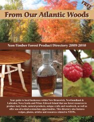 From Our Atlantic Woods - Fundy Model Forest