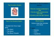 The Circulatory System - Waterford Public Schools