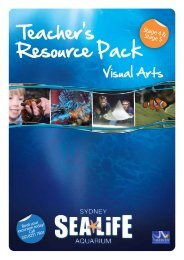 Visual Arts Resource Pack - Sydney Aquarium