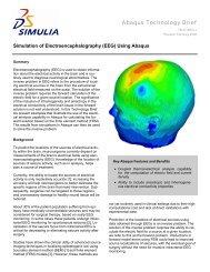 Simulation of Electroencephalography (EEG) Using Abaqus