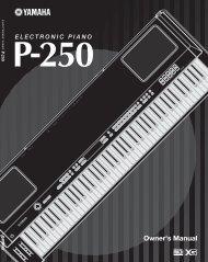 P-250 - zzounds.com