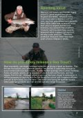 What is a Sea Trout? - Salmon & Trout Association - Page 3