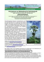 Informationsblatt zur Bekämpfung der Herkulesstaude zum ...
