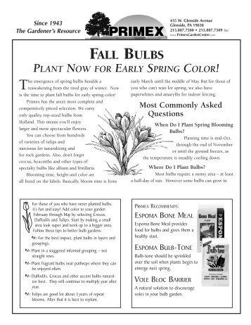 Delightful Fall Bulbs   Primex Garden Center