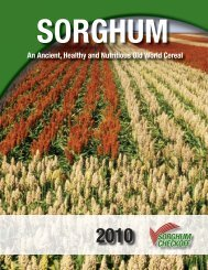 An Ancient, Healthy and Nutritious Old World Cereal - Sorghum ...