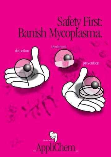 Safety First: Banish Mycoplasma.