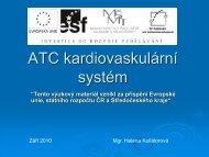 ATC kardiovaskulární systém