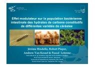 Effet modulateur sur la population bactérienne intestinale ... - FACW
