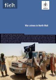 War crimes in North Mali - FIDH