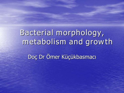Bacterial morphology, metabolism and growth