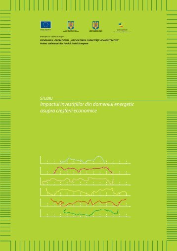 Impactul Investițiilor din Domeniul Energetic - Facultatea de ...