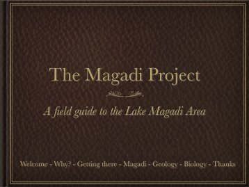 The Magadi Project - Michigan Technological University