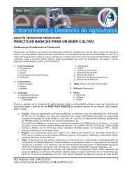 practicas basicas para un buen cultivo - Cuenta del Milenio ...