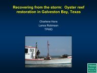 Oyster reef restoration in Galveston Bay, Texas - Restore America's ...