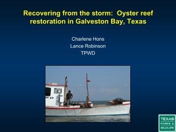 Oyster reef restoration in Galveston Bay, Texas - Restore America's ...