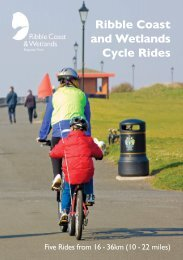 Ribble Coast and Wetlands Cycle Rides - Lancashire County Council
