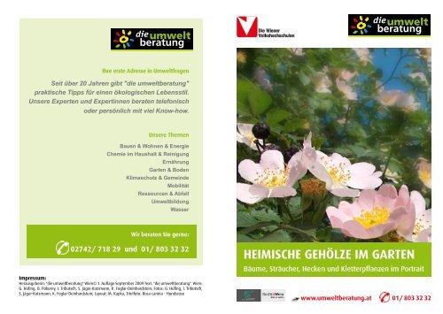 5 Kreuzdorn Rhamnus catharticus Futterpflanze für Falter 60-100 cm wurzelnackt