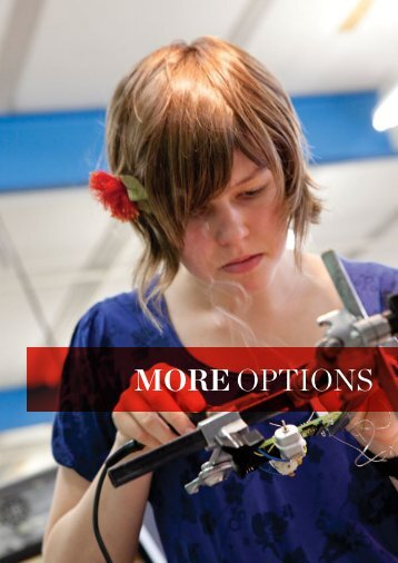 More options – Planning your degree - University of Canterbury