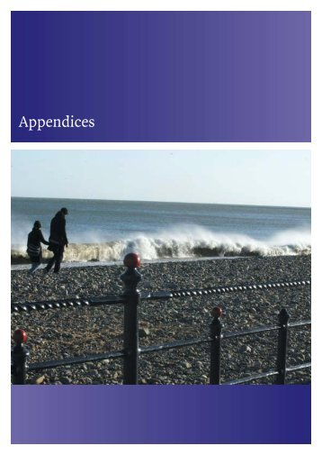 Appendices - Wicklow.ie