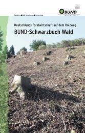 Schwarzbuch Wald - Stora Enso
