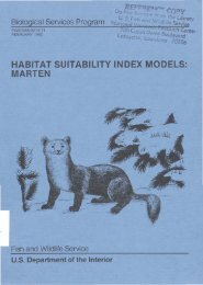 habitat suitability index models: marten - USGS National Wetlands ...