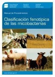 Manual de Procedimientos - Clasificación fenotípica de las ... - Senasa