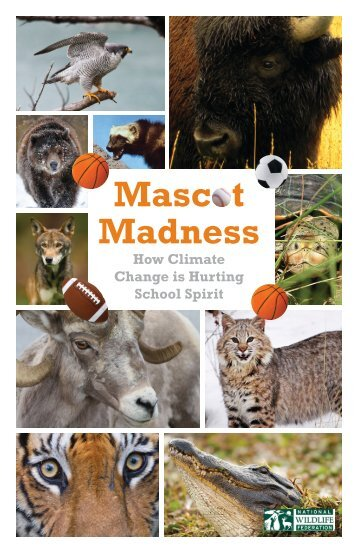 NWF-Mascot-Madness_hi-res_Report_3-10-14