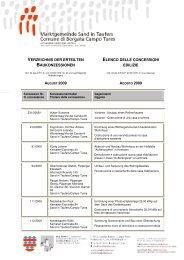 Concessioni edilizie 08/2009 (68 KB) - .PDF
