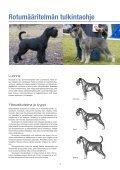 Rotumääritelmän Tulkintaohje.pdf - Page 4