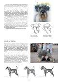 Rotumääritelmän Tulkintaohje.pdf - Page 6