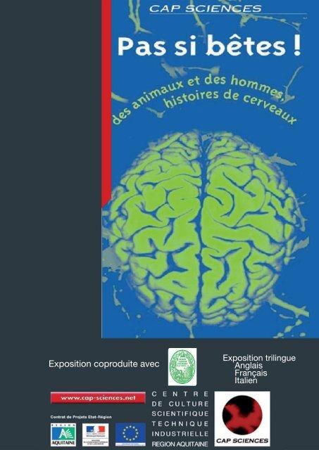 Les modules de l'exposition - Cap Sciences