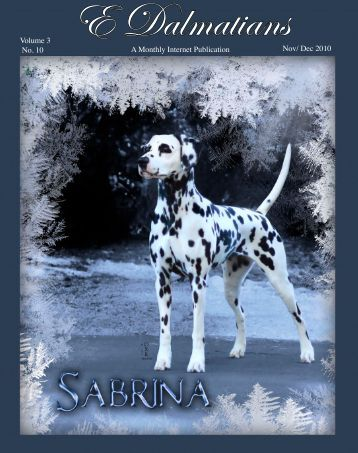 Download Nov/ Dec Edition in PDF - E Dalmatians
