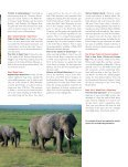Discover South Africa - EF Educational Tours - Page 3