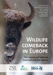 Wildlife-Comeback-in-Europe-the-recovery-of-selected-mammal-and-bird-species