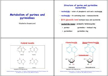 Metabolism of purines and pyrimidines