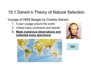 darwins theory on natural selection Darwin's theory in 1859 in 1859, charles darwin set out his theory of evolution by natural selection as an explanation for adaptation and speciation.