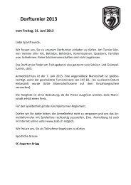 Dorfturnier 2013 - SC Aegerten Brügg