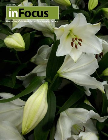 June 2012 Newsletter of the Westchester Photographic Society - WPS