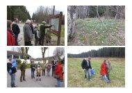 Bilder Narzissen-Wanderung 2013 - SPD Ortsverein Monschau